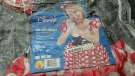 Fancy Dress Mini mouse