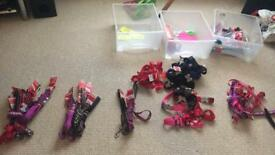 Red Dingo Designer Dog accessories job lot