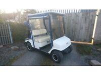 Petrol golf buggy