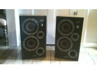 Wharfedale E30 speakers one good, one buzzing ..hence