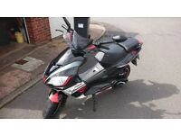 Pulse Scout 50cc SOLD