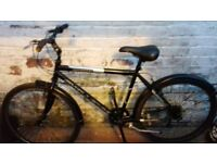 bicicle for sale