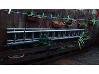 approx 24 foot double alliumium ladders