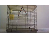 budgie with big cage and food