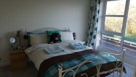 Double room to rent (short term) £450 all inc.