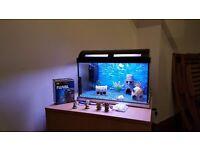 Marina small fish tank full setup