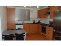 Modern Spacious 2 Double Bedroom Ground Floor Flat inc En-suite for Rent in Stenhouse Gardens