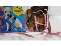 2x small dog harnesses
