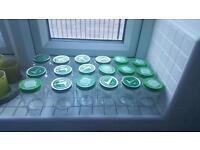 Empty glass jars (24)