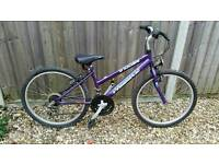 "Girls purple mountain bike (12.5"" frame)"