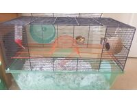 2 male gerbils and cage for sale to a good home.