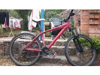 Giant Mountain Bike - Brass 3.