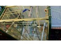 big parrot cage with statuse is very strong cage monile 07981759094