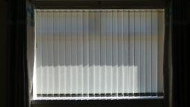 white vertical blind