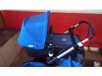 royal blue and black bugaboo buffalo 2014