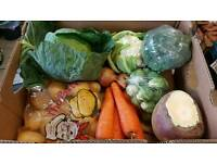 Fresh fruit, vegtable , salad box