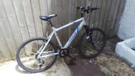 Bike Apollo 07946778183. What app