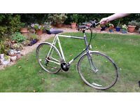 Adult 'Raleigh' Bicycle