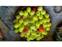 Coloured golf balls 100