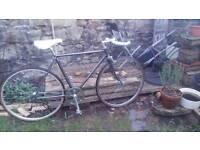 Beautiful Singlespeed/Fixie Bike