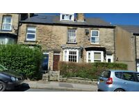 STUDENT HOUSE TO LET/LARGE ROOMS/5MIN WALKING DISTANCE TO THE UNIVERSITY OF SHEFFIELD