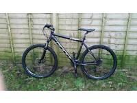 Felt mountain bike