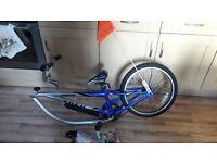 Bike trailer for child age 4-7