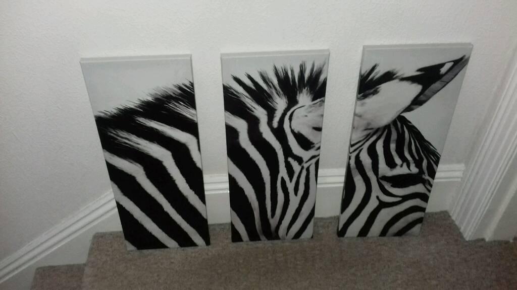3 framed zebra photo | in Plympton, Devon | Gumtree