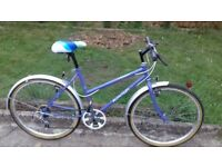 LADIES WOMEN ADULTS RALEIGH CALYPSO 26 INCH WHEELS 19 INCH FRAME 18 SPEED BIKE BICYCLE