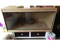 Large Reptile Vivarium with lots of extras lights, heater, dust, bowls.. £100 for all