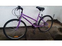 Ladies Mountain Bike in Good Condition