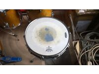 "chad smith signature 14"" snare"
