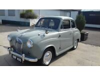 """MY LITTLE GEM"" AUSTIN A30"
