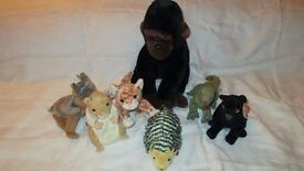 ty beanie babies and a beanie buddy - lot 7