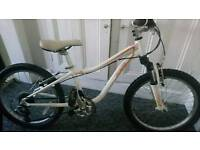 Specialized hotrock 20 mountain bike