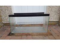 2.5ft fish tank