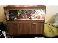 Large vivarium with cabinet