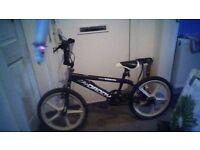 bmx skyway big daddy bike