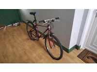 """Men 16"""" frame bicycle with 22"""" wheels for 50 GBP"""