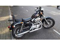 Harley Davidson XLH 883 cc