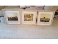 NEXT set of 3 wooden framed floral pictures