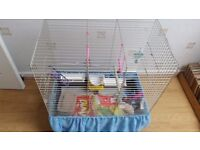 BIRD CAGE - fully equipped - excellent condition & dog beds/sleeping bags