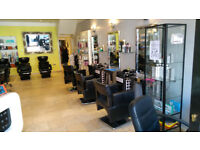 Experienced Unisex Hair Stylist required (Crouch End) Part or full time
