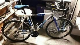 Barracuda team racing bike