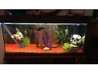 3-4FT Jewel fish tank with fish and accessories n stand. PICK UP ONLY-WILL NEED CONTAINERS FOR FISH