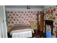 Two good size rooms at a good location rent as single room