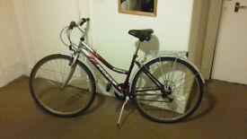 Bike (red)