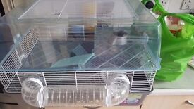 Large Plastic Hamster Home - 3 Months Old Pets at home