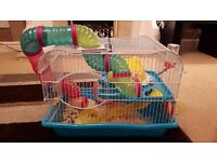 Hamster, cage, accessories, foi and treasts