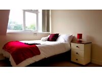 Great RoomS/Pals Available
